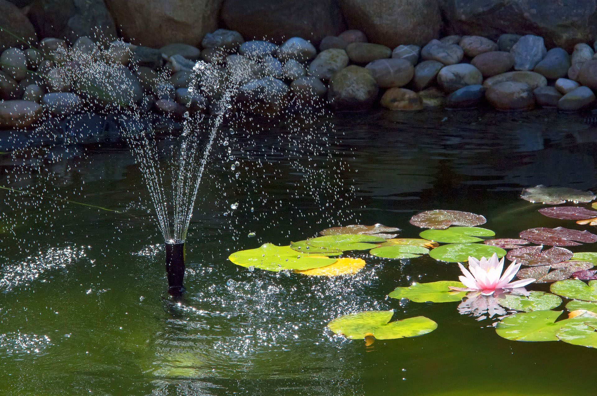 pond-fountain